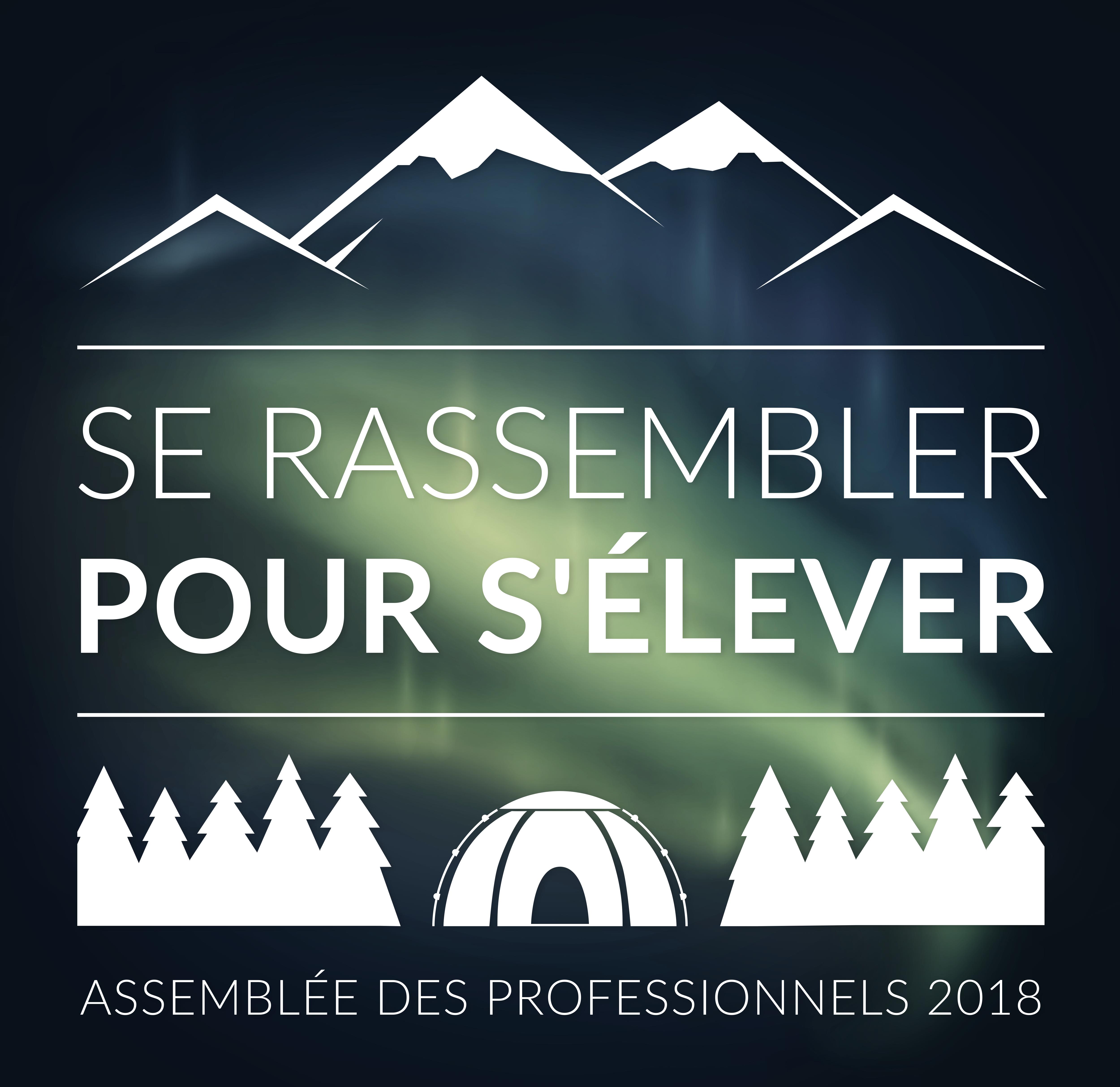 433-OD Logo - Assemblée des professionnels 2018